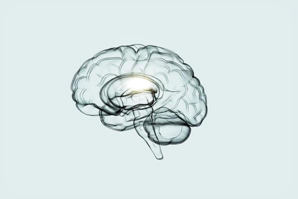 Como manter seu cérebro saudável em qualquer idade, de acordo com neurologistas